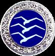Silber-C-Abzeichen mit drei Schwingen und silbernem Rand