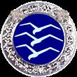 Silber-C-Abzeichen mit zwei Diamanten (Drei Schwingen in silbernem Rand mit zwei Diamanten)